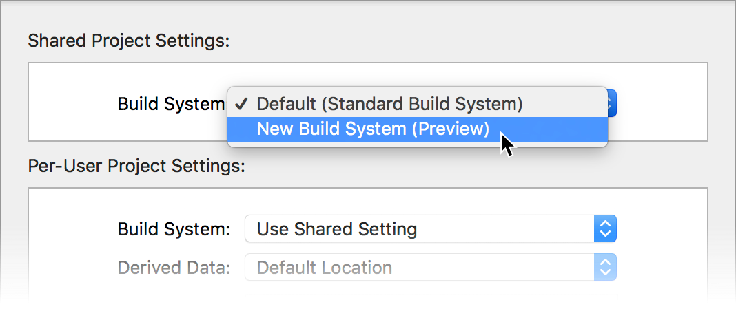 Project settings sheet with popup menu to select build system